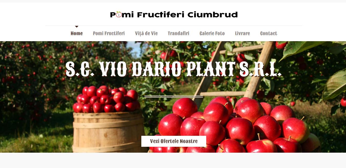 Pomi Fructiferi Ciumbrud - S C VIO DARIO PLANT S R L serverxtrem.ro